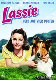lassie_held_auf_vier_pfoten_front_cover.jpg
