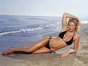 Nell McAndrew : 'Bikini' Wallpapers x 3